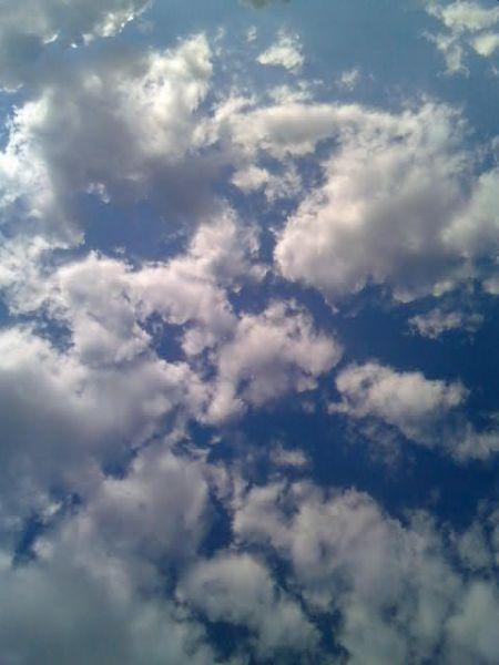 Xavier Darcos dans les nuages... dans Municipales 2008 090
